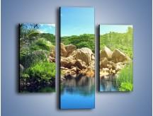 Obraz na płótnie – Bogata roślinność nad wodą – trzyczęściowy KN1082AW3