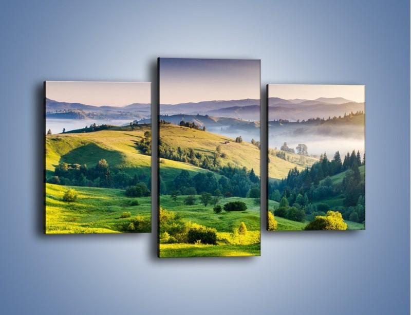 Obraz na płótnie – Tylko zieleń i góry – trzyczęściowy KN1084W3