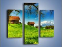 Obraz na płótnie – Chatki na polanie – trzyczęściowy KN1085AW3