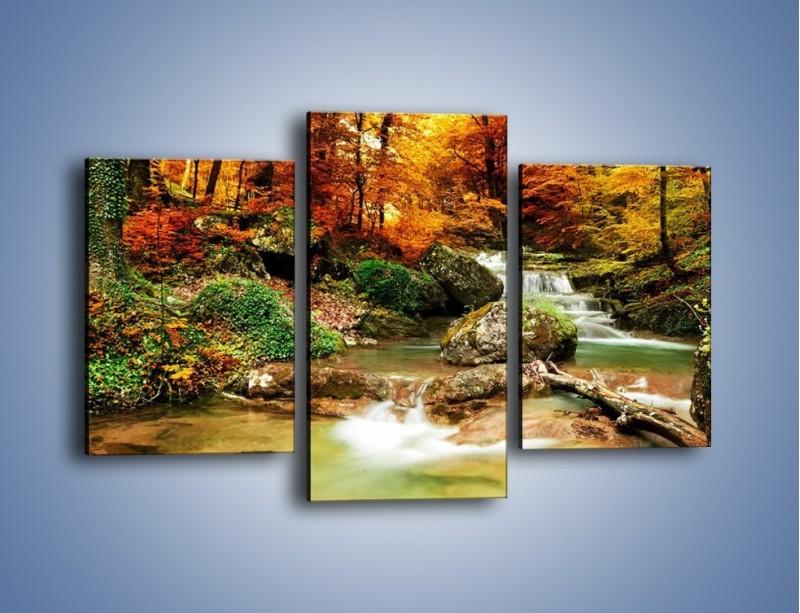 Obraz na płótnie – Jesienne kolory w lesie – trzyczęściowy KN1094AW3