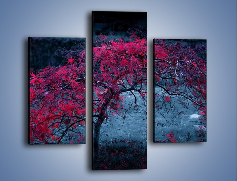 Obraz na płótnie – Czerwone płaczące drzewo – trzyczęściowy KN1101AW3