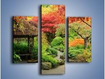 Obraz na płótnie – Alejka między kolorowymi drzewami – trzyczęściowy KN1113W3