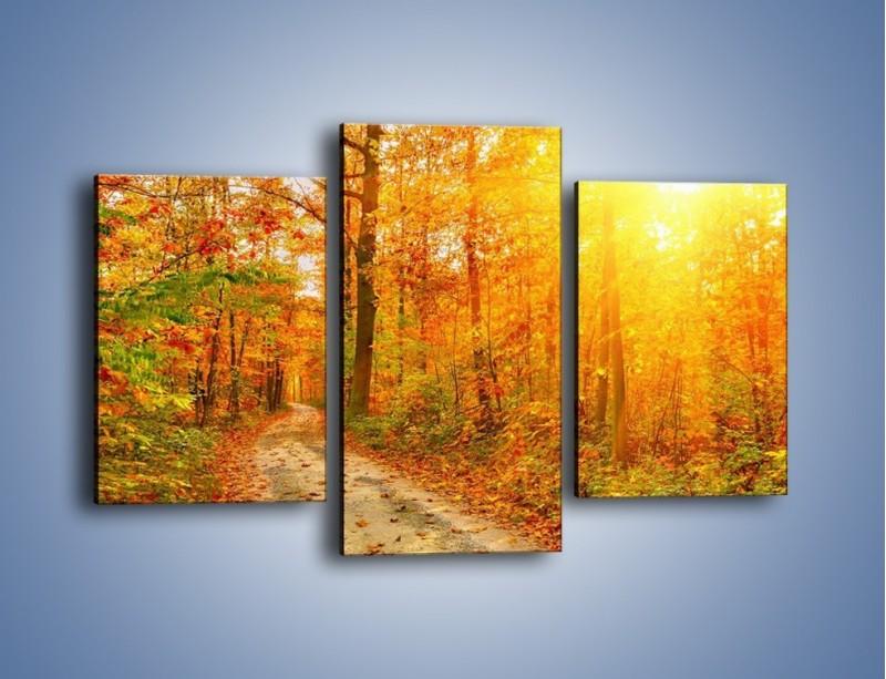 Obraz na płótnie – Leśną drużką jesienią – trzyczęściowy KN1163AW3