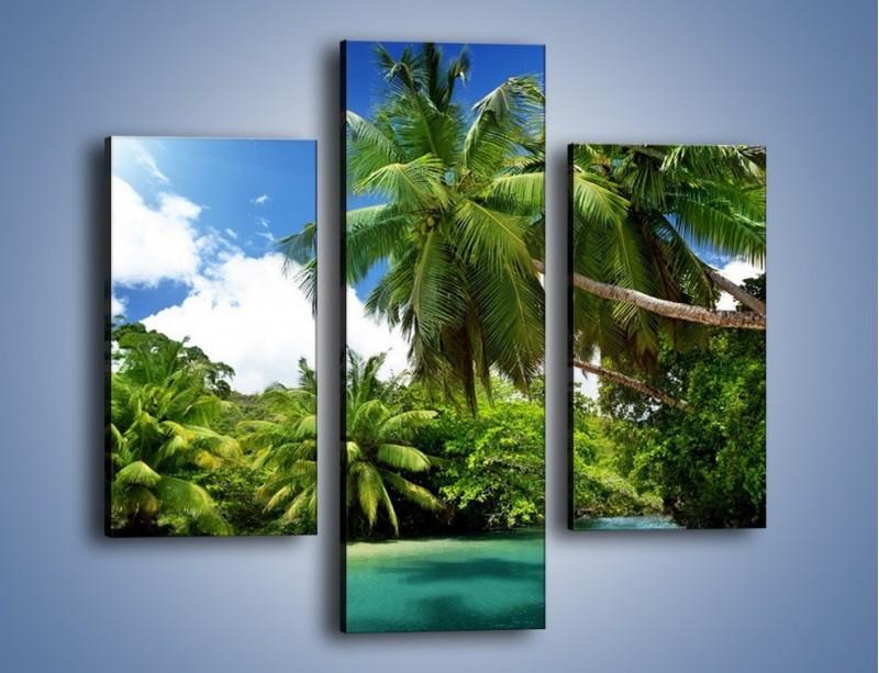 Obraz na płótnie – Rozłożone palmy i woda – trzyczęściowy KN1168AW3