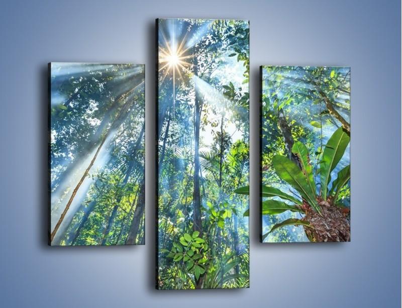 Obraz na płótnie – Dyzio marzyciel i drzewa – trzyczęściowy KN1189AW3