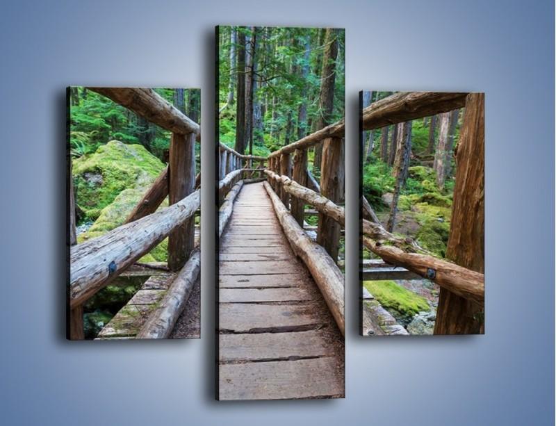 Obraz na płótnie – Mostek z drewnianych bali – trzyczęściowy KN1207AW3
