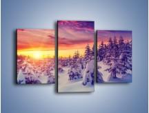 Obraz na płótnie – Choinki w śnieżnej szacie – trzyczęściowy KN1220AW3