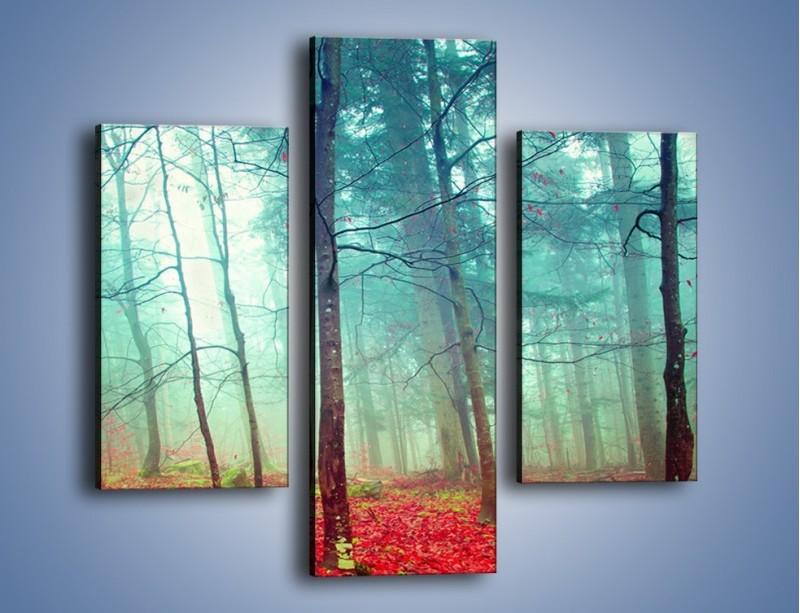 Obraz na płótnie – Drzewka na czerwonym dywanie – trzyczęściowy KN1222AW3