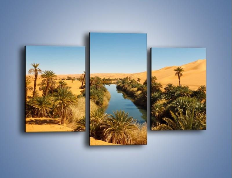 Obraz na płótnie – Woda woda na pustyni – trzyczęściowy KN1294AW3