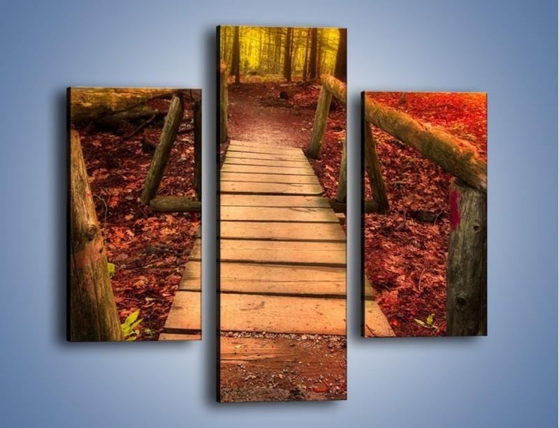 Obraz na płótnie – Krótkie przejście przez las – trzyczęściowy KN1330AW3