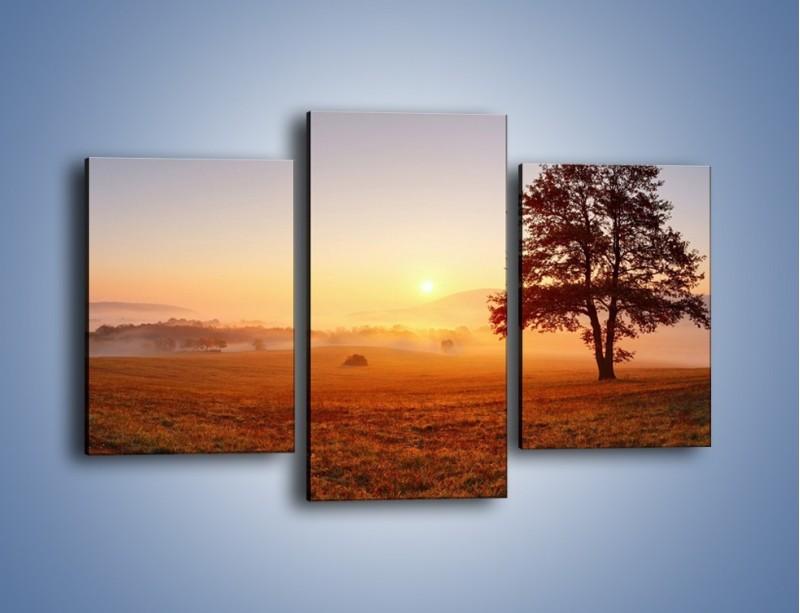 Obraz na płótnie – Krajobraz utopiony we mgle – trzyczęściowy KN1331AW3