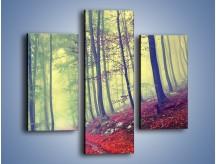 Obraz na płótnie – Bardzo wąską ścieżką leśną – trzyczęściowy KN1335AW3