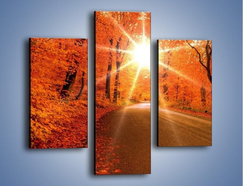 Obraz na płótnie – Droga pełna słońca – trzyczęściowy KN160W3