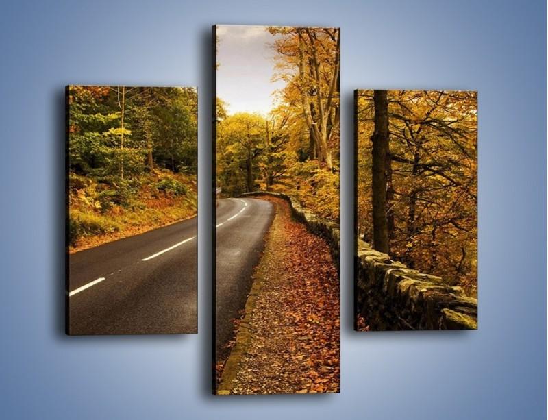Obraz na płótnie – Asfaltową droga przez las – trzyczęściowy KN169W3