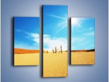Obraz na płótnie – Błękit nieba i słońce w ziemi – trzyczęściowy KN331W3