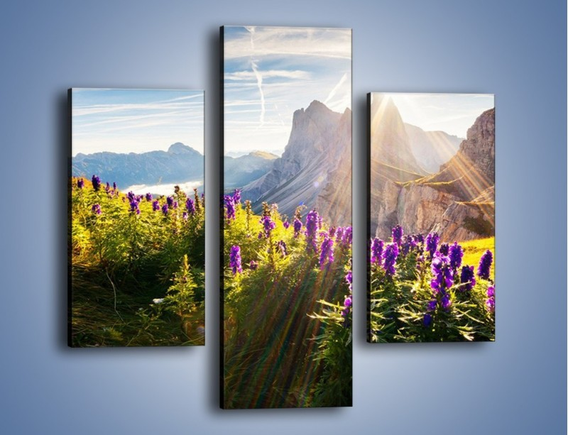 Obraz na płótnie – Góry w poświacie słońca – trzyczęściowy KN502W3