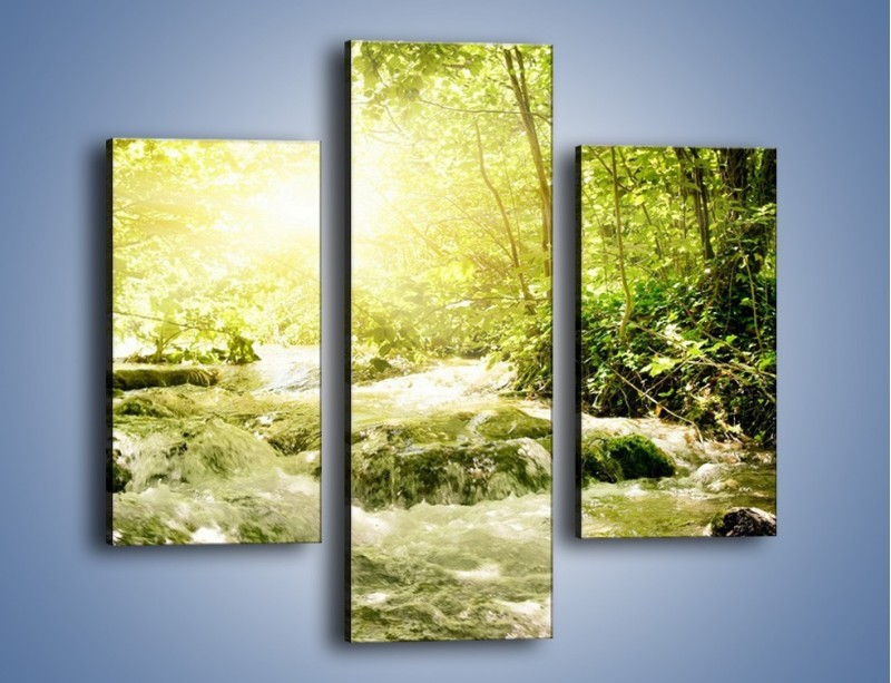 Obraz na płótnie – Wzburzony potok leśny – trzyczęściowy KN508W3