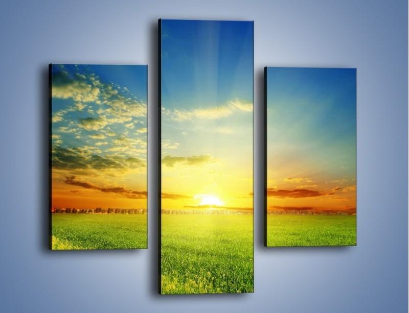 Obraz na płótnie – Łąka pełna zieleni – trzyczęściowy KN542W3