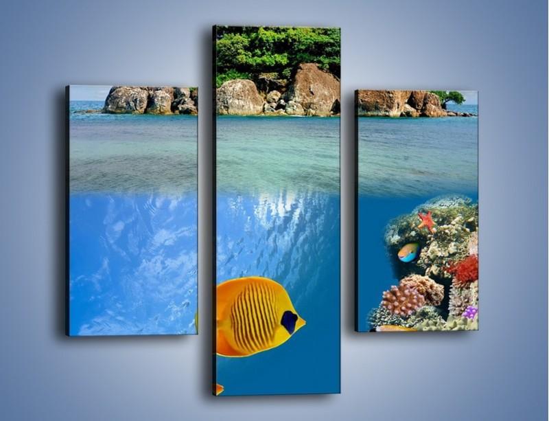 Obraz na płótnie – Podwodny świat na wyspie – trzyczęściowy KN586W3