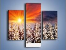 Obraz na płótnie – Choinki w środku zimy – trzyczęściowy KN682W3