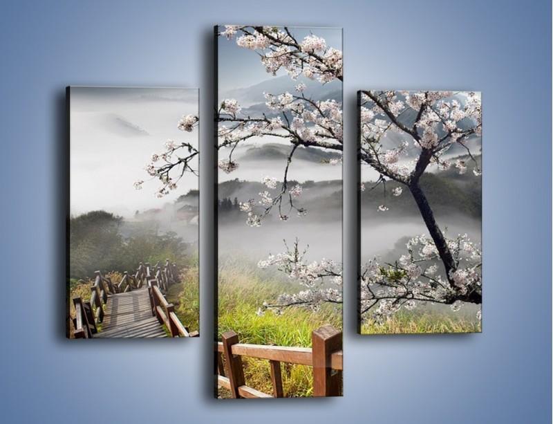 Obraz na płótnie – Drzewo wiśni i kręte schody – trzyczęściowy KN698W3