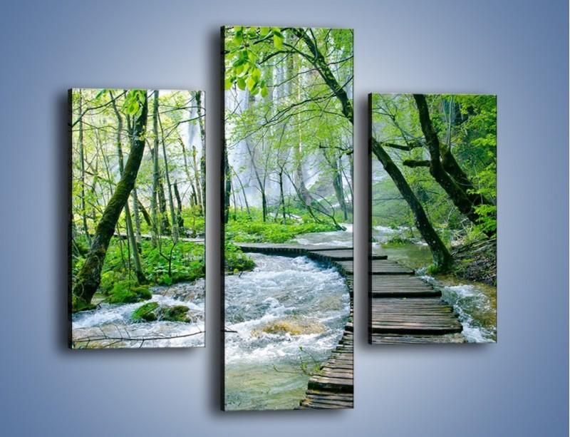 Obraz na płótnie – Drewniana kładką przez potok – trzyczęściowy KN720W3