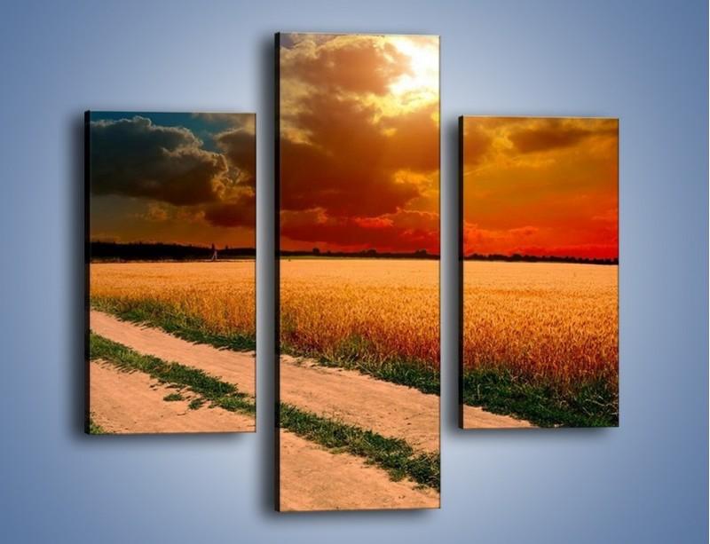 Obraz na płótnie – Zbożowa polana i jej cały urok – trzyczęściowy KN776W3