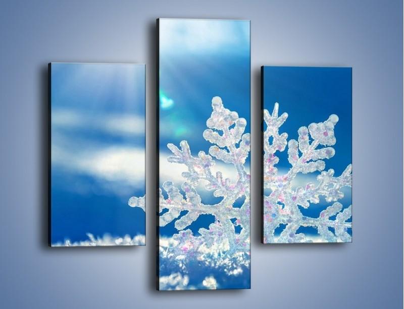 Obraz na płótnie – Diamentowa śnieżynka – trzyczęściowy KN808W3