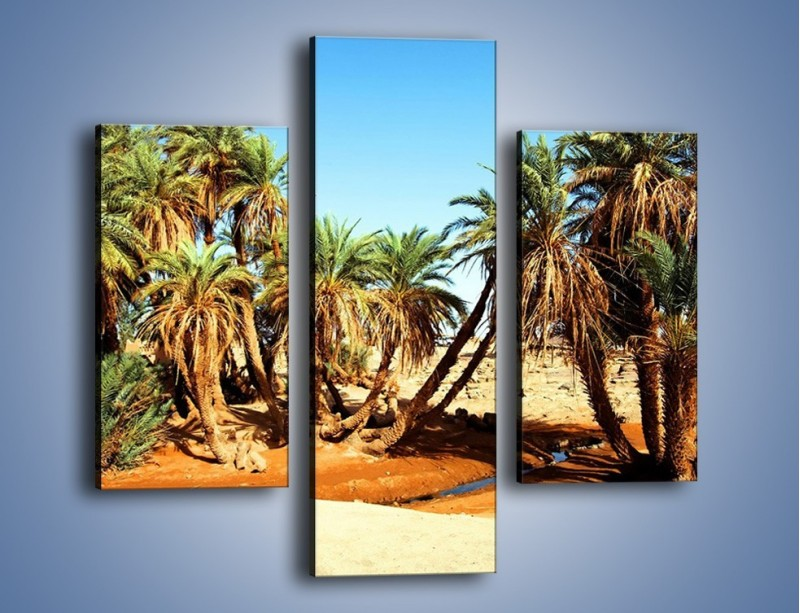 Obraz na płótnie – Palmowa rodzina w komplecie – trzyczęściowy KN809W3