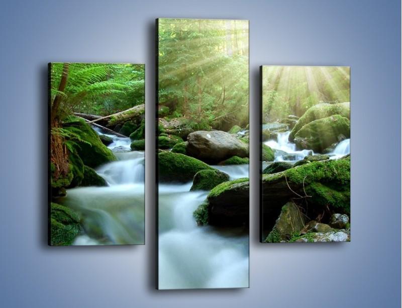 Obraz na płótnie – Silny potok w środku lasu – trzyczęściowy KN861W3