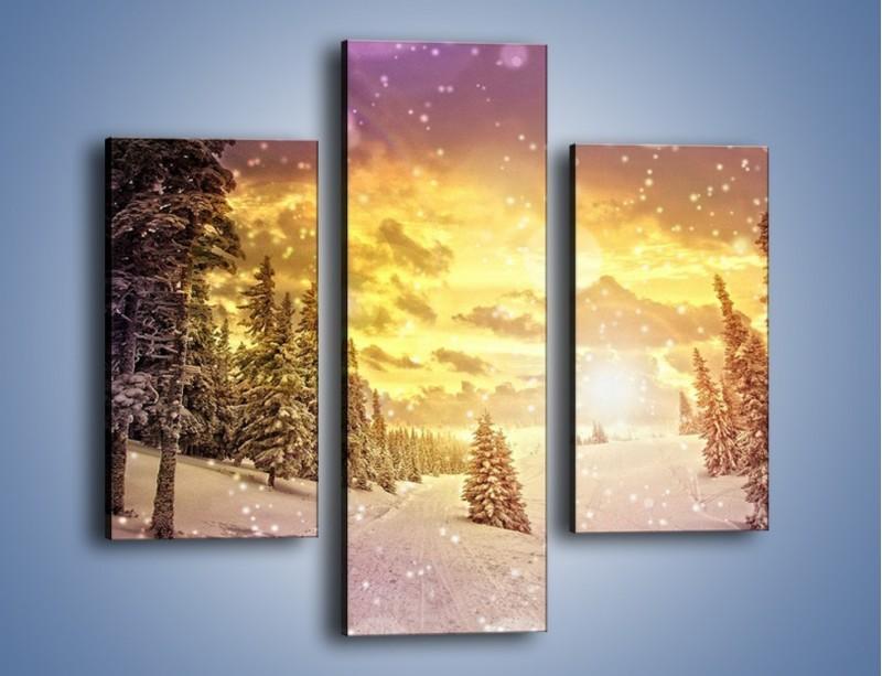 Obraz na płótnie – Śnieżna kraina – trzyczęściowy KN868W3