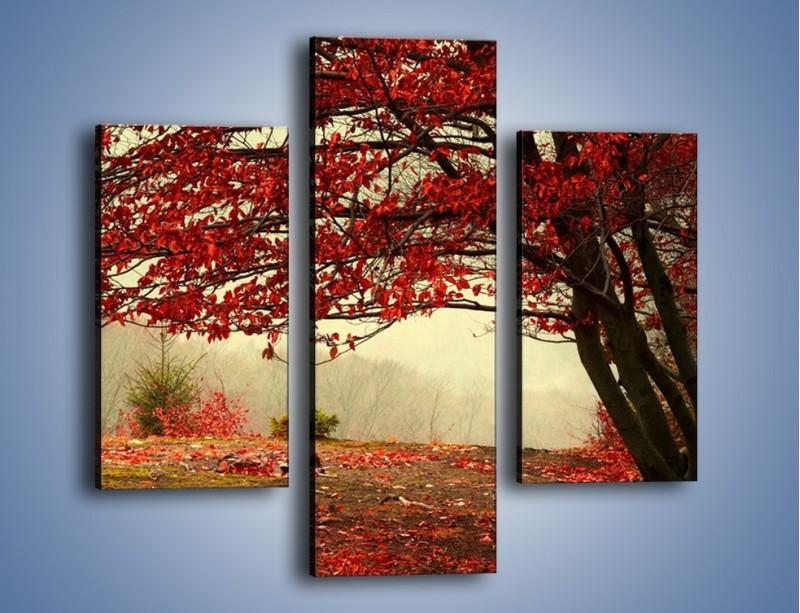 Obraz na płótnie – Spadające liście z drzew – trzyczęściowy KN910W3