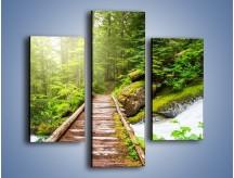 Obraz na płótnie – Bezpieczna droga przez las – trzyczęściowy KN922W3
