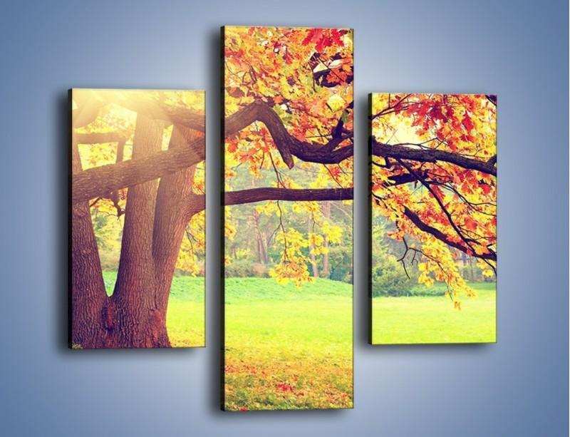 Obraz na płótnie – Jesienią w parku też jest pięknie – trzyczęściowy KN967W3