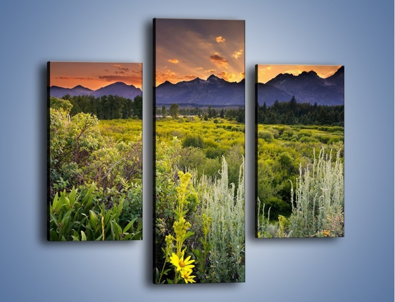 Obraz na płótnie – Wieczorny spokój na polanie – trzyczęściowy KN987W3