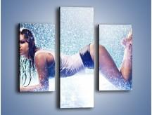 Obraz na płótnie – Ciało zmoczone deszczem – trzyczęściowy L045W3