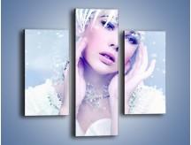 Obraz na płótnie – Delikatna królowa śniegu – trzyczęściowy L224W3
