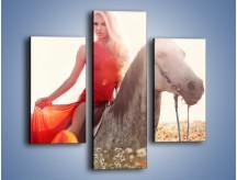 Obraz na płótnie – Damska przejażdżka w makach – trzyczęściowy L332W3