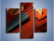 Obraz na płótnie – Instrument i muzyka poważna – trzyczęściowy O025W3