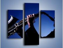 Obraz na płótnie – Koncert na saksofonie – trzyczęściowy O110W3