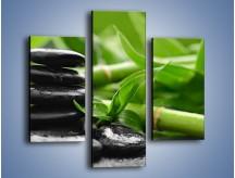 Obraz na płótnie – Czarne kamienie wśród bambusów – trzyczęściowy O137W3