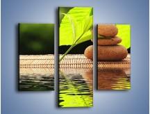 Obraz na płótnie – Liście odbite w lustrze wodnym – trzyczęściowy O149W3