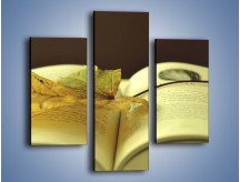 Obraz na płótnie – Liść na ciekawej powieści – trzyczęściowy O163W3
