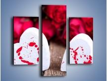 Obraz na płótnie – Dwa idealnie pasujące serca – trzyczęściowy O211W3