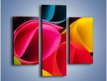 Obraz na płótnie – Kolorowe rulony – trzyczęściowy O217W3