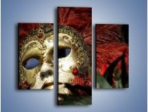 Obraz na płótnie – Maska pełna tajemnicy – trzyczęściowy O252W3