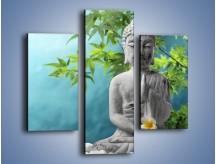 Obraz na płótnie – Idealny świat harmonii i spokoju – trzyczęściowy O258W3