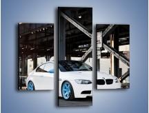 Obraz na płótnie – BMW E92 M3 Coupe pod starym mostem – trzyczęściowy TM088W3