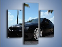 Obraz na płótnie – BMW M3 GTS – trzyczęściowy TM095W3