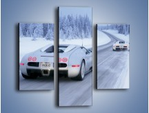 Obraz na płótnie – Bugatti Veyron w śniegu – trzyczęściowy TM134W3